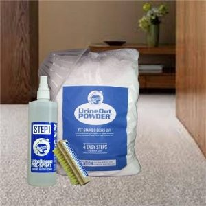 remove cat urine from carpet